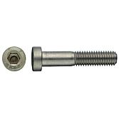 Zylinderschraube DIN 6912 A2